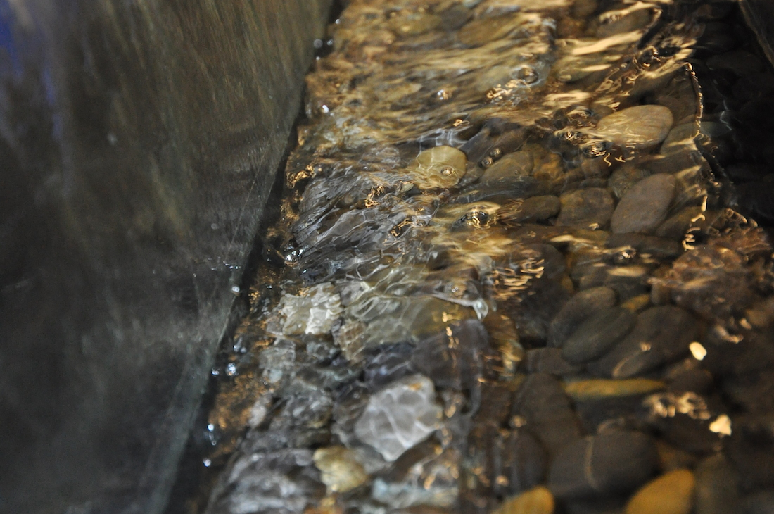 Glass water wall detail, NetBrain Technologies, Burlington, MA.